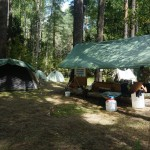 7.-Sweet-camp